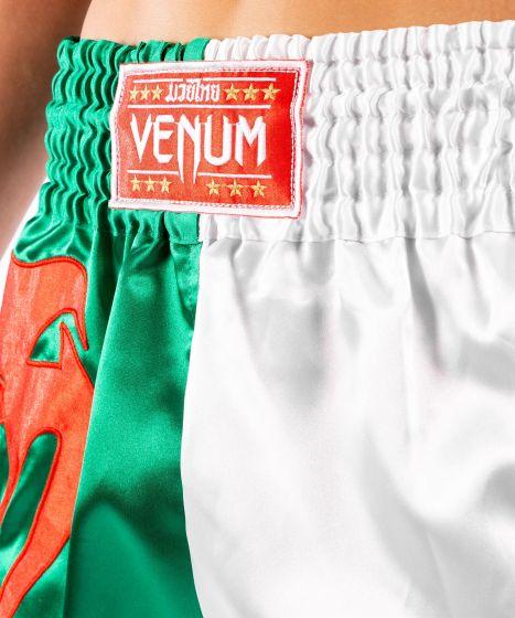 Venum MT 플래그 무에타이 쇼츠 - 알제리아